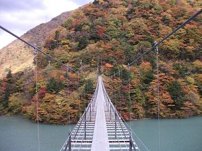 南アルプスジオサイト「畑薙大吊橋付近」
