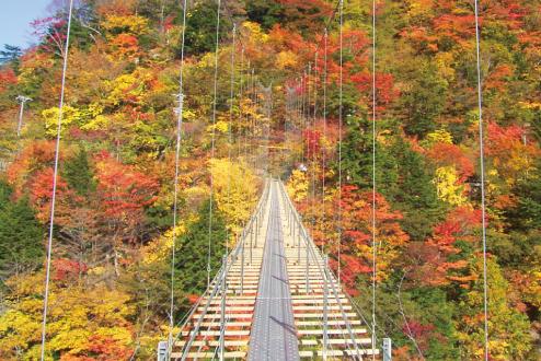 畑薙大吊橋