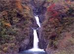 用红叶的安倍7瀑布巡游洗负离子吧