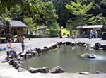 우메가시마에서 캠프 & 탐험!