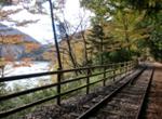 在春天的井川体验报废的铁路行走、摆渡船