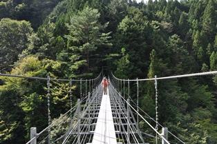 井川夢の吊り橋.JPG