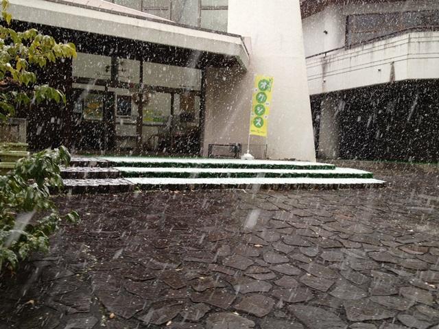 井川大雪2.JPG