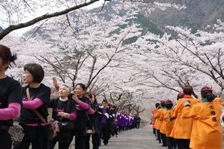봄 축제 1.jpg