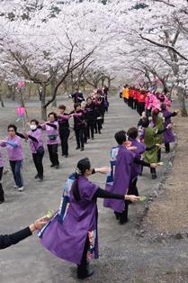 봄 축제 5.jpg