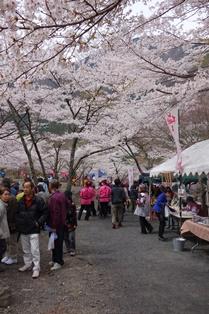 봄 축제 7.jpg
