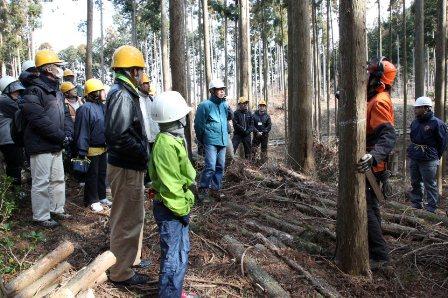 林業經驗1.jpg