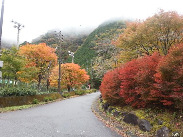 梅岛konya的家乡20131107-1.jpg