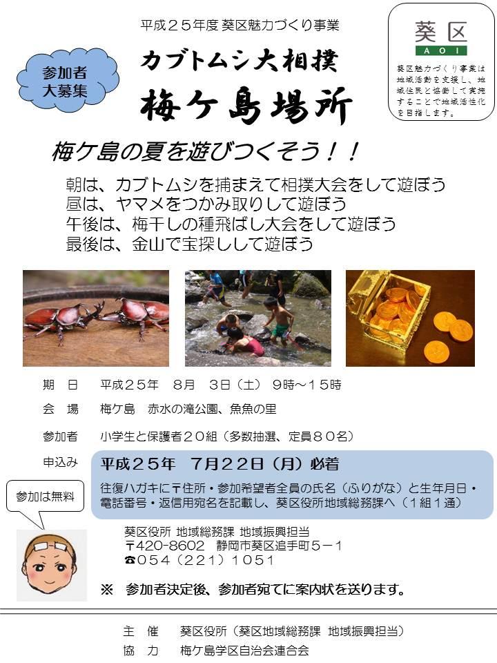 梅ケ島場所チラシ.jpg