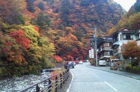 우메가시마 온천 마을 단풍(1).JPG