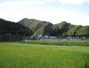 油山8.jpg