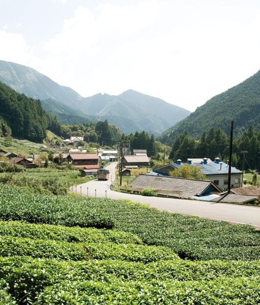 다마카와 풍경 사진 2.jpg