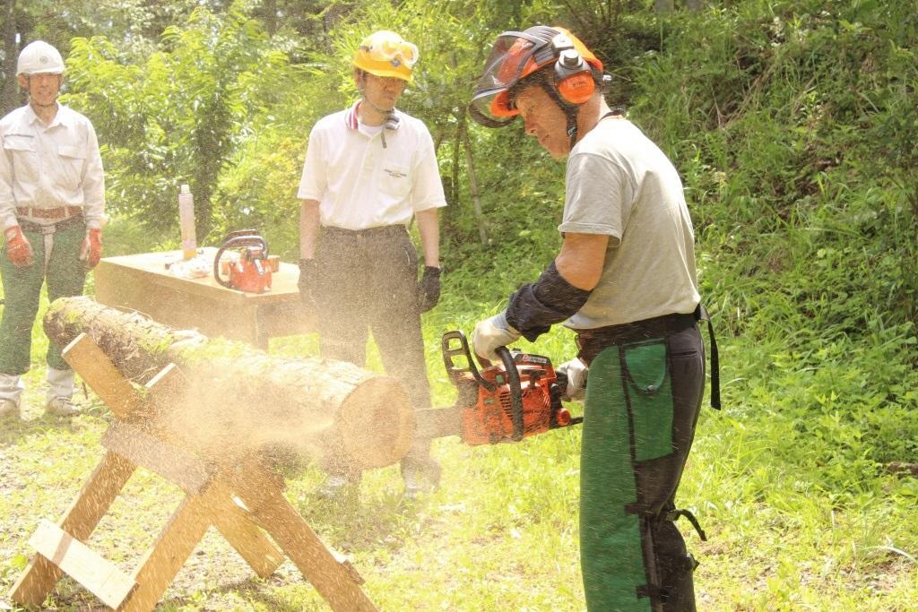 林業體驗※昨年度実施状況.jpg
