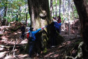 大树的森观察会2.JPG