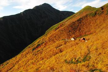 荒川小屋の黄葉と小赤石.JPG
