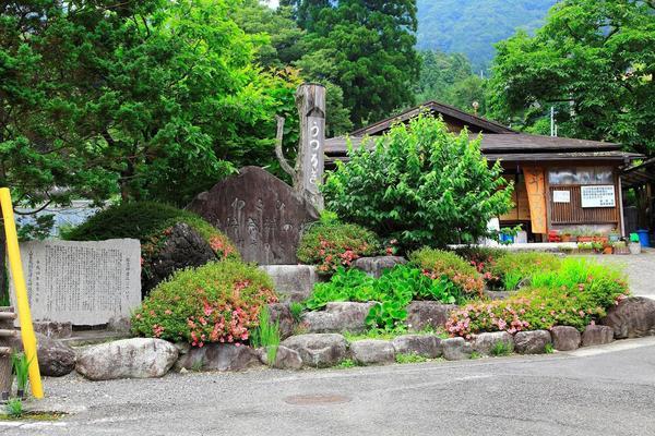 有东木utsurogi 2.jpg