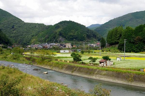 ㉒大川100年荞麦的旱田(1024x678).jpg