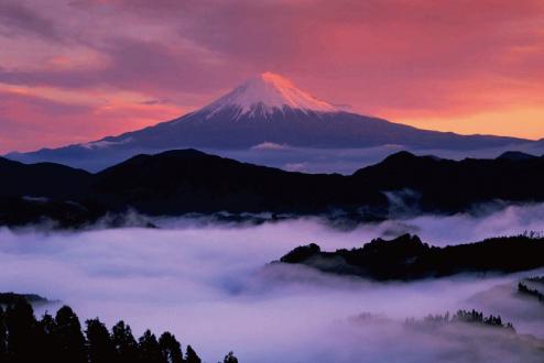 yoshihara_main.jpg
