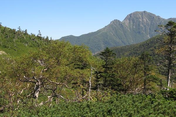 南アルプスの主な山「塩見岳」